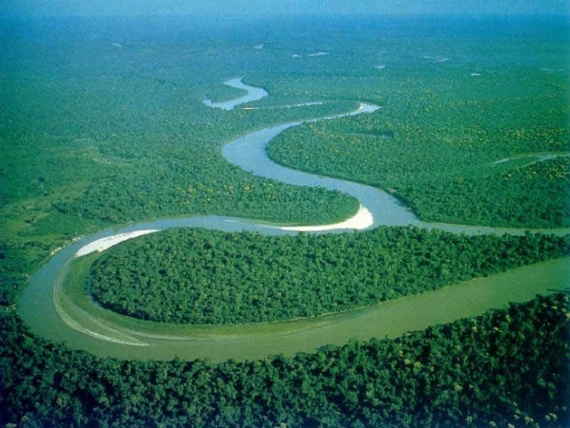 Amazon river rio wiki