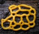 Beginning of the Age of Slime Molds