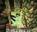 Spellbound Caves Developer's Commentary