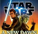 "Brandon Rhea/""Star Wars: A New Dawn"" Announced as First New Official Star Wars Book"