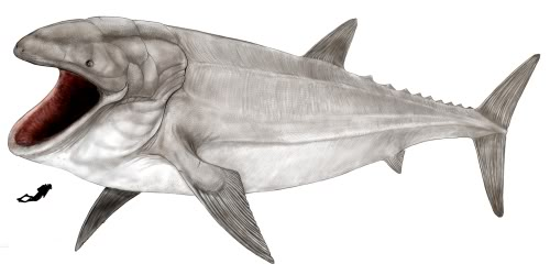 [Image: Leedsichthys.jpg]
