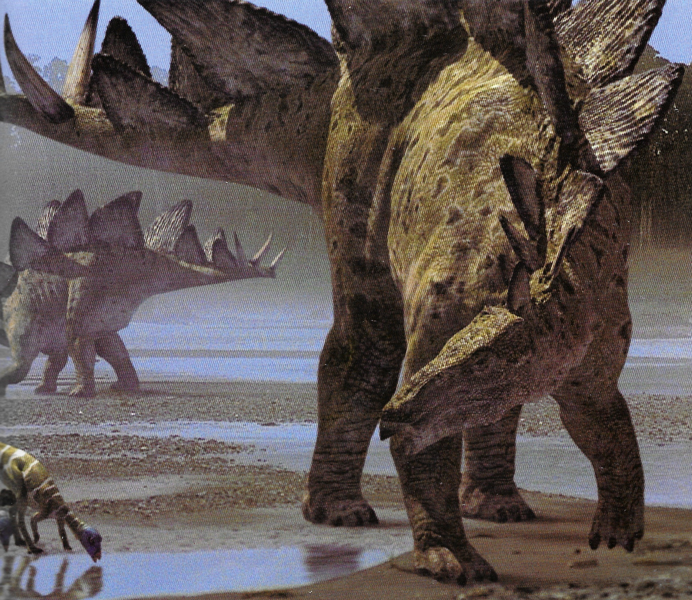 Stegosaurus walking with wikis the free walking with