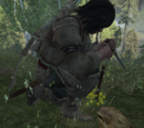 Lezioni di caccia