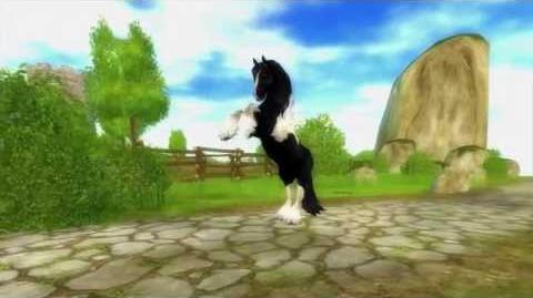 Tinker Horse