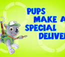 Pups make a Special Delivery
