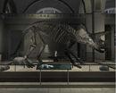 Libertonian-TLAD-FossilTriceratops.jpg