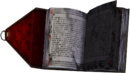 Book of Bizarre Things.png