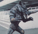 Rhinoceros Mutant