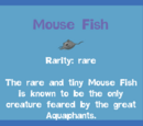 Mouse Fish