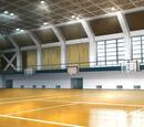 Achilles Gym