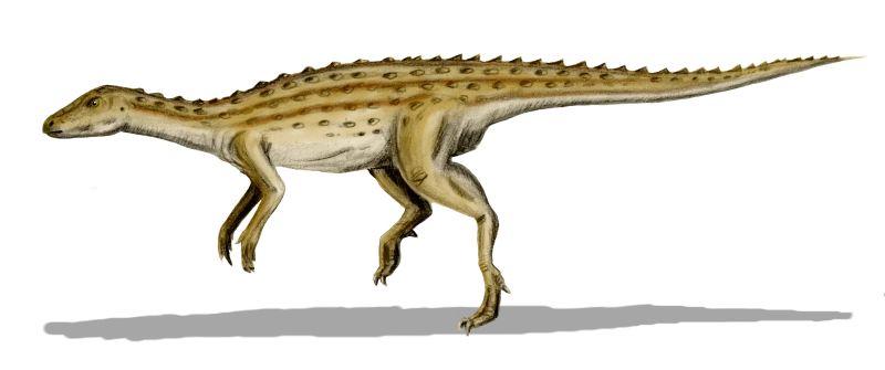 Scutellosaurus-795793.jpg