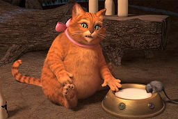 Puss In Boots Dreamworks Animation Wiki