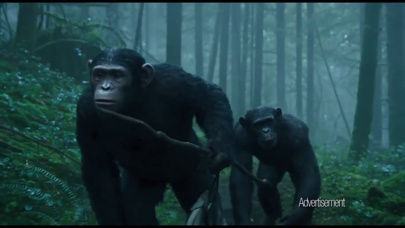 Bonobo the eye of horus - 1 7