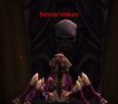 Nerub'enkan