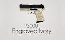 P2000-ivory-workshop.png