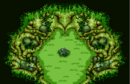 Transform Forest.png