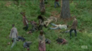 TWD-1456.png
