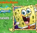 Liste des épisodes (Saison 1)