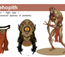 Allehopith