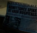 Техасский вестник