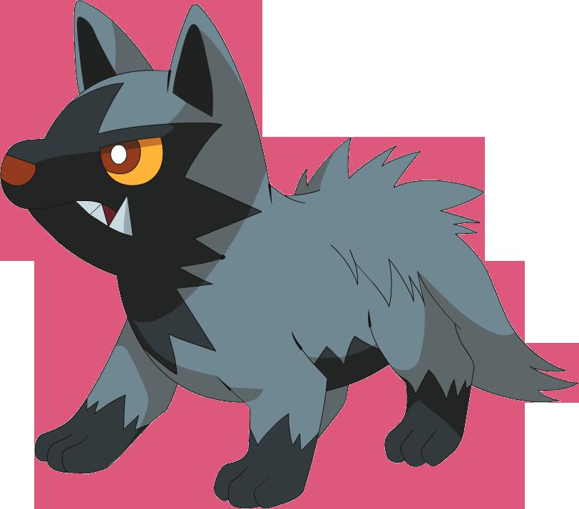 Poochyena - Pokémon Wiki - Wikia