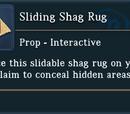 Sliding Shag Rug