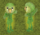 Sirocco the Kakapo Parrot