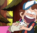 The Mystery in Gravity Falls