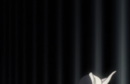 215Orihime explains.png