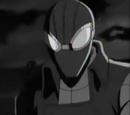 Peter Parker (Earth-TRN455)