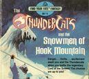 The Snowmen of Hook Mountain (Book)