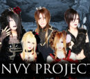 ENVY PROJECT