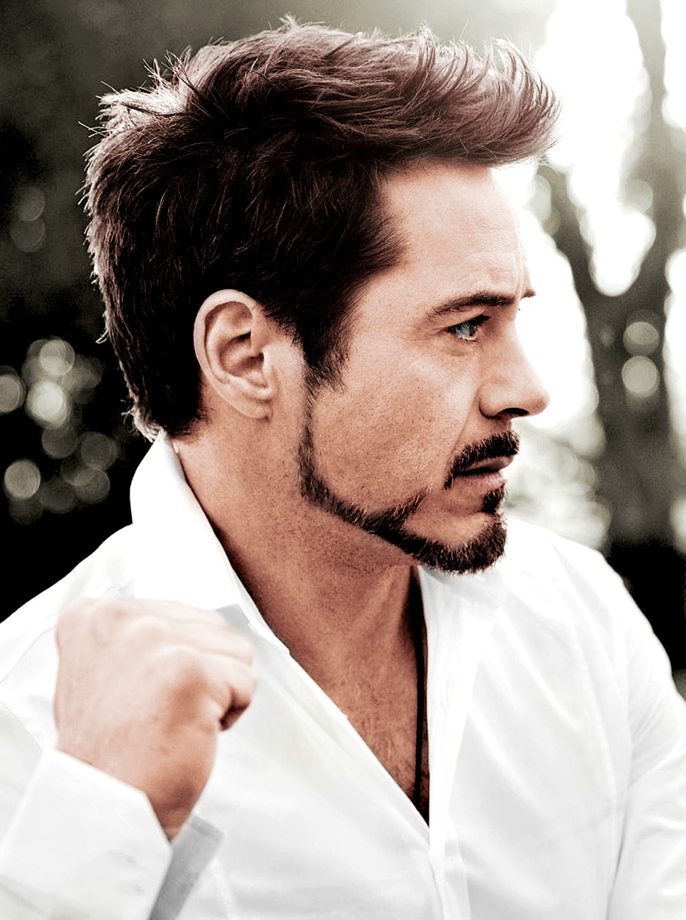 Robert Downey, Jr. - Iron Man Wiki