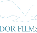 Film production companies of Switzerland