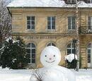 Om de zăpadă