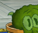 Squidward's Bonsai
