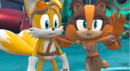 Tails and Sticks Stails Taicks.png