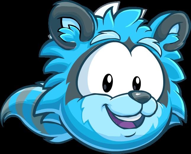 Blue raccoon puffle club penguin wiki the free editable