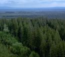 Trillemarka National Park