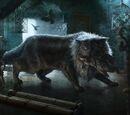 Balerion (gato)