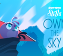 Own The Sky