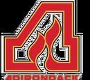 Adirondack Flames