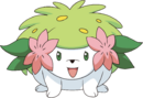 492Shaymin Land Forme DP anime 4.png