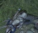 Il cavaliere senza testa