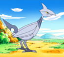 Skarmory (Mystery Dungeon)