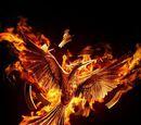 Die Tribute von Panem – Mockingjay Teil 2
