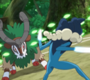 XY058: The Green, Green Grass Types of Home!