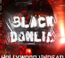 Black Dahlia Remixes
