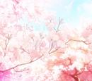 Episode 22: Spring Wind