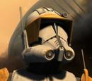Clone trooper marshal commanders